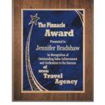 plaque_award_rising_star_1