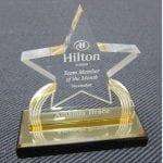 Acrylic Carved Star Awards