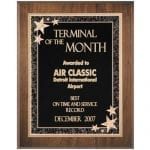 "Starburst Plaque Award 9""x12"""