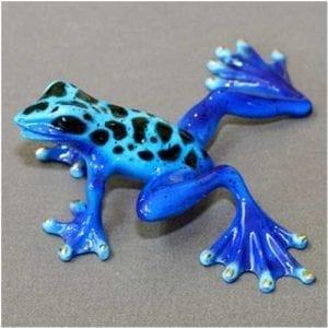 Bronze Frog Rebecca