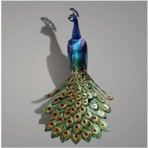 The Peacock back view