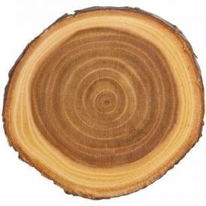 Round Wood Slabs