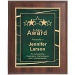 Award Plaque with Wide Border