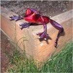 Bronze Frog Figure Elexess Red Purple