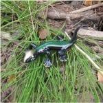 Emerald Small Lizard Casting
