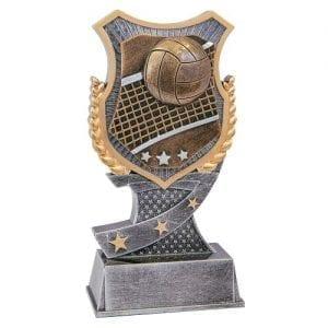 Volleyball Shield Award